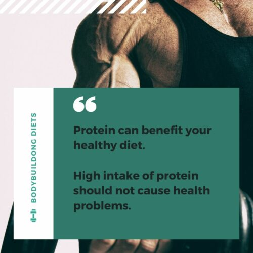 High protein diets summary