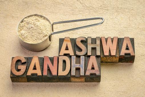 Scoop of ashwagandha root (aka Indian ginseng) powder