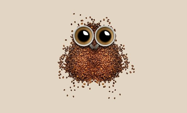 Coffe beans coffee cup funny
