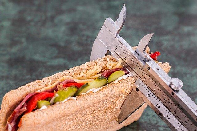 sandwich on a diet